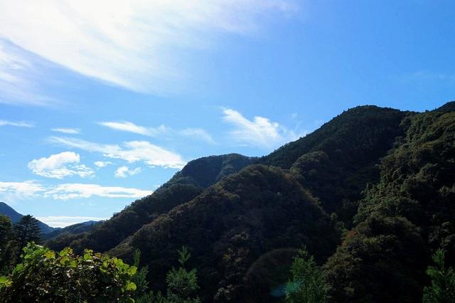 檜原村の山の眺め
