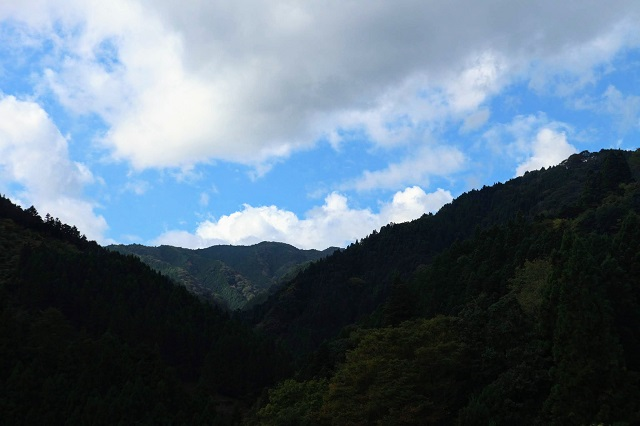 春日神社から見た絶景